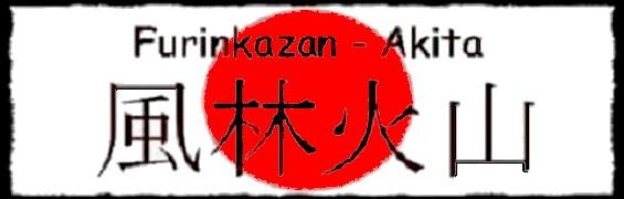bannerfurinkazan-4.jpg
