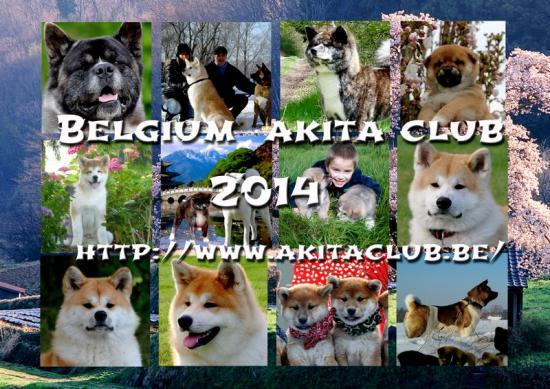 cover-2014-verkl.jpg