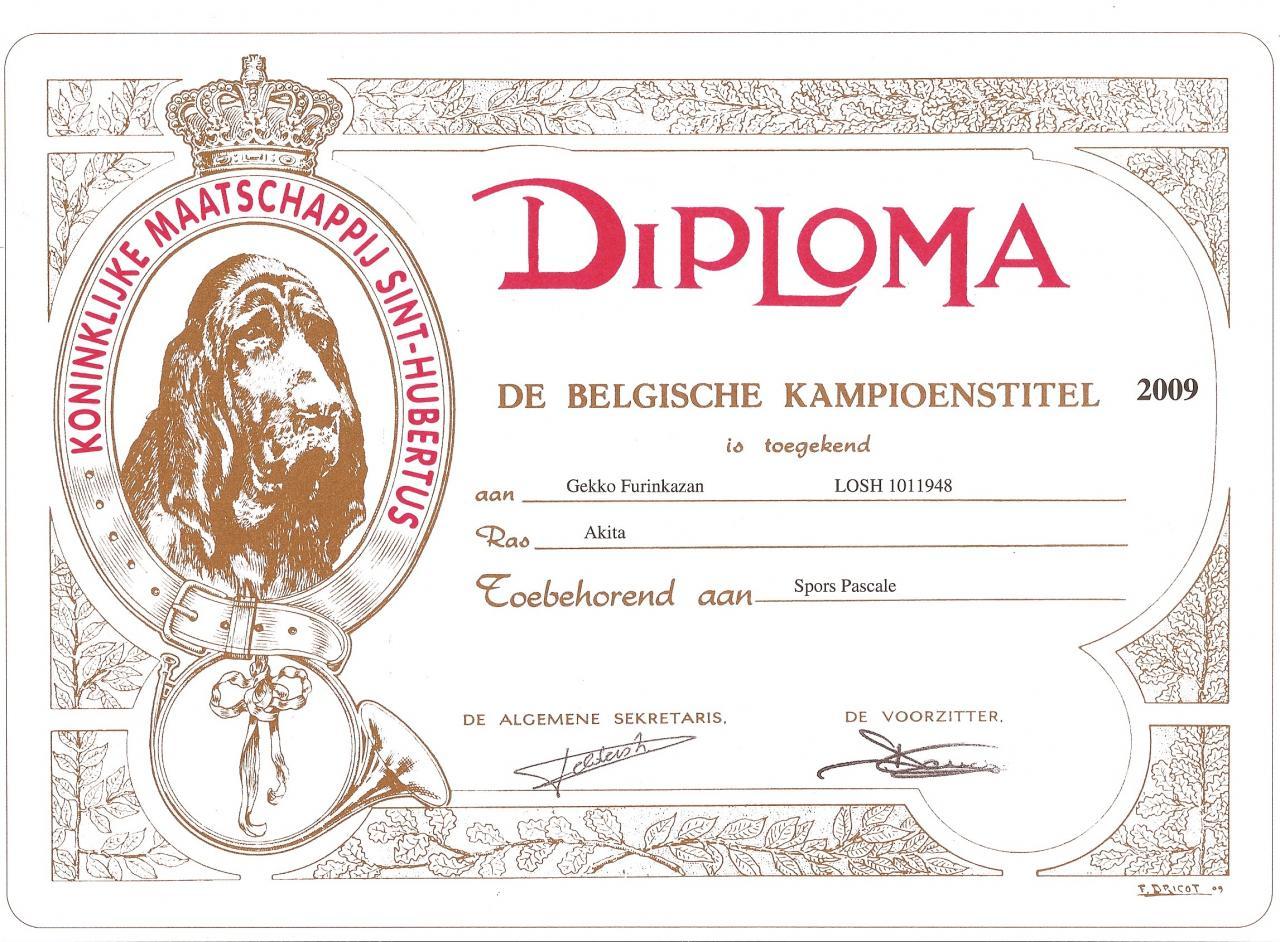 diploma-gekko-furinkazan-be.jpg