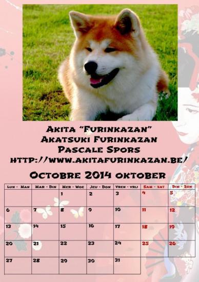 octobre1-verkl.jpg